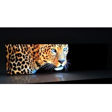 Glasbild LED-beleuchtet